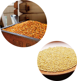 Grains and Fermentation image